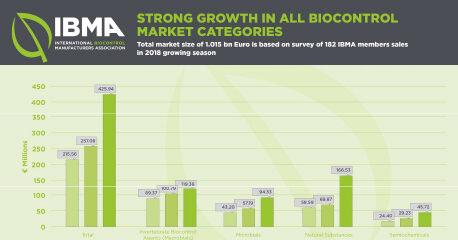 IBMA Survey 2020