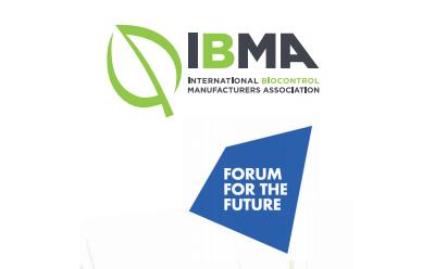 IBMA FFF Workshop 9 June